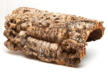 Cork Bark Large